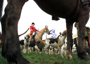 A hunt in the Scottish Borders gets under way.