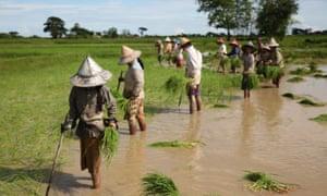 Myanmar climate migrants