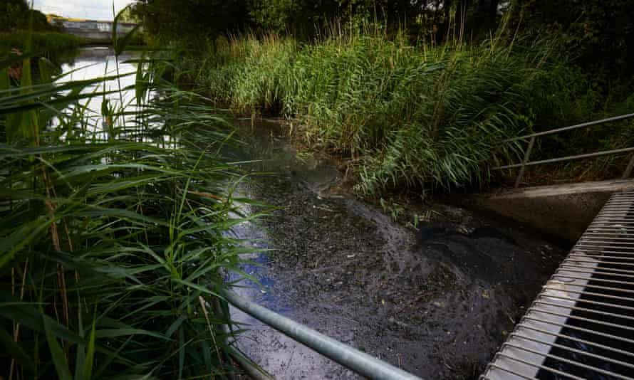 Data published last year revealed that none of England's rivers meet quality tests for pollution.