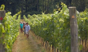 Albury Vineyard August Tour