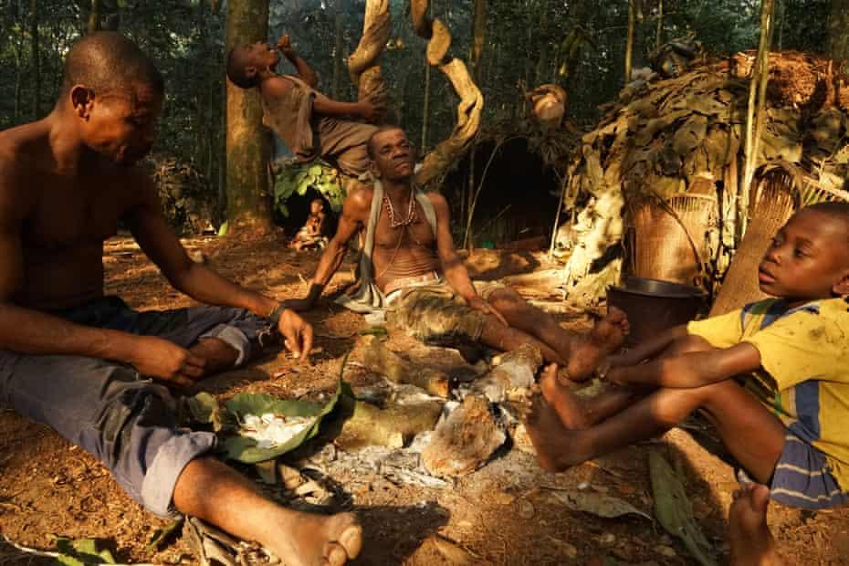 Ba'aka pygmies in the Sangha forest