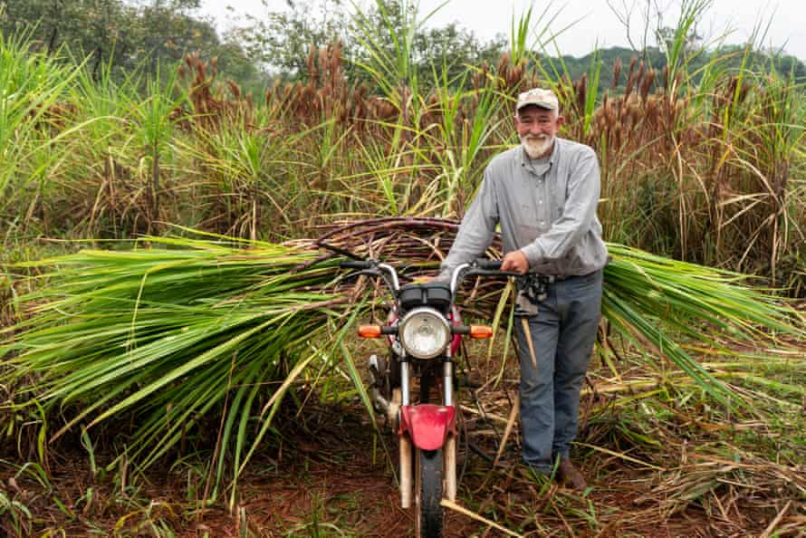 Ireneo Vega is one of the founders of Onoiru. In addition to producing yerba mate, he also cares for and harvests the association's agroecological sugarcane crops.