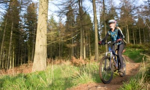 A female mountain biker riding in a forest