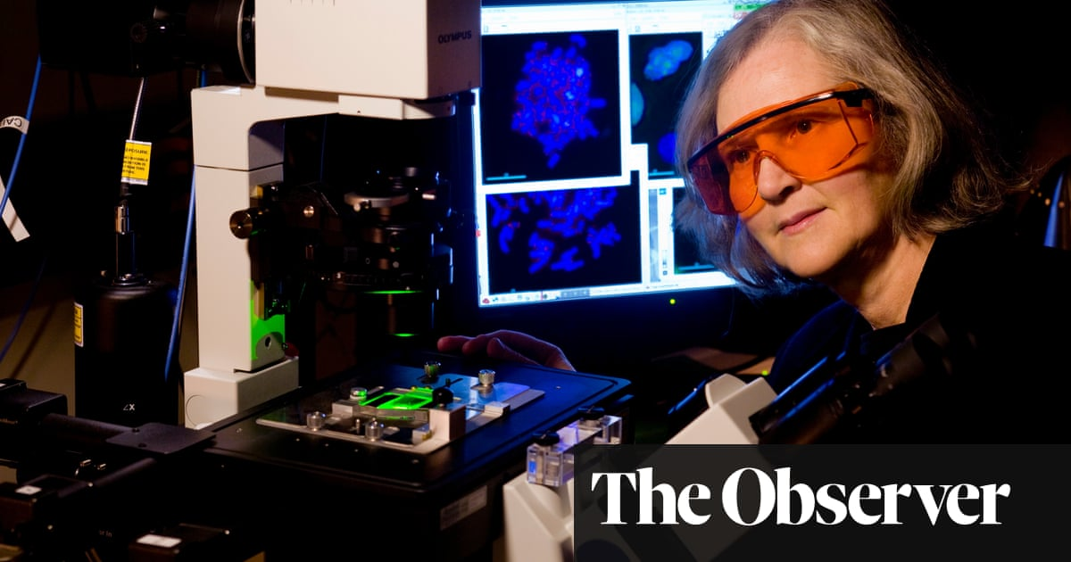 Elizabeth Blackburn on the telomere effect: 'It's about keeping