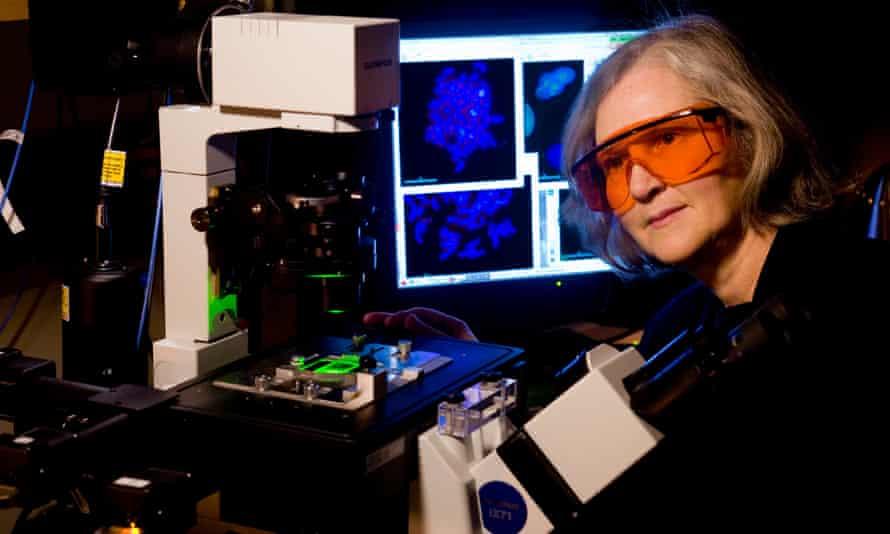 Professor Elizabeth Blackburn in her lab before her Nobel prize award in 2009