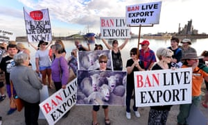 A protest against live exports at Port Adelaide, South Australia