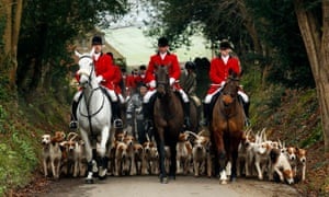 Members of the Old Surrey Burstow and West Kent Hunt. Since the ban stopped fox hunting with hounds, hunts continued with dogs chasing down a pre-laid scented trail instead of a fox.