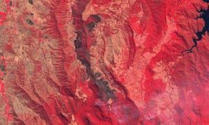 Colour infrared satellite image showing burnt vegetation near Lamington national park.