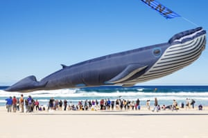 A kite in the shape of a humpback whale is flown during the Festival of the Winds at Bondi beach, Australia