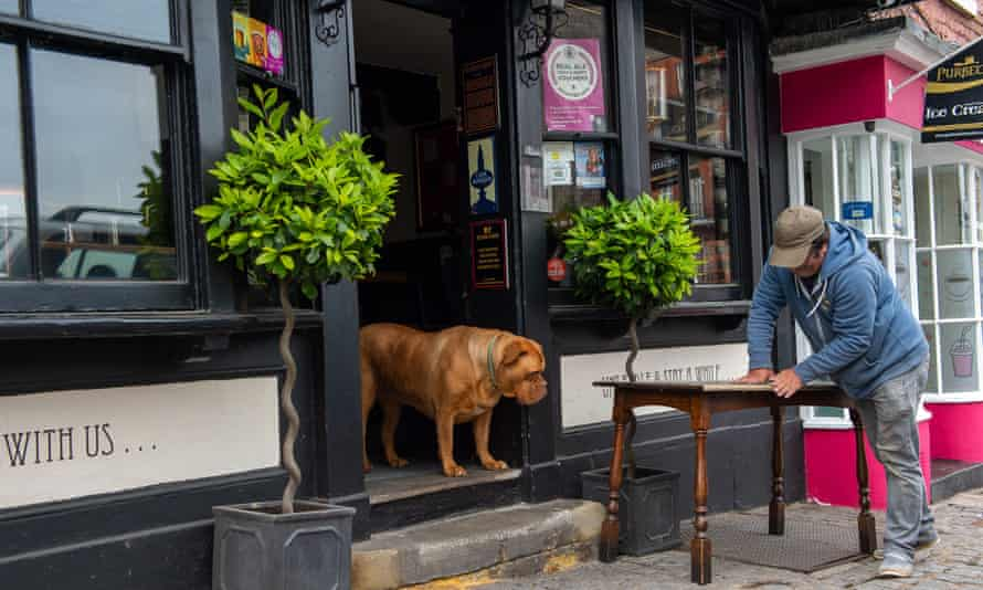 Awaiting the green light from the Government … Betty the French bullmastiff supervises work on refurbishing pub tables outside the Horse and Groom pub in Windsor Castle.