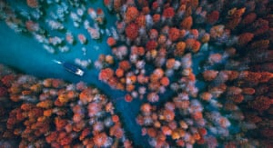 autumn trees and a boat