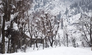 A view of snow covered trees and mountains after a recent snow fall on 31 January, 2020.