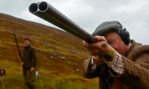 Grouse shooter in Highlands