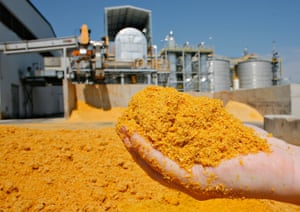 Distillers Dried Grains, DDG, which is a byproduct of the alcohol process at the Commonwealth Agri-Energy Ethanol plant in Hopkinsville, KY.