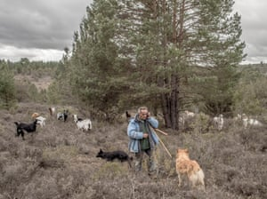 Santiago 'Cani', 55, talks to his wife on the phone as he leads his flock to graze near the village of Cobeta.