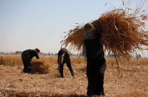 Already there is a shortfall of a fifth in wheat supplies, the UN says.