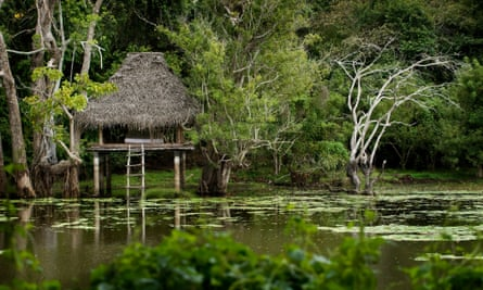 A raised hut in water with lotus plants
