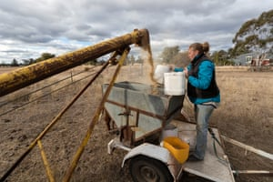 Jess Taylor at work on the family farm.