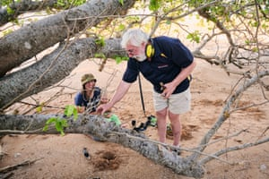 Local historian Mike Owen, with the help of local fossicker Jess McLean digs up a rifle shell casing from the second world war near the site where Dion McLean found what could be a 500-year-old Iranian coin at Buffalo Creek, Northern Territory.
