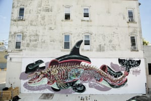 Nychos, Dissection of an Orca