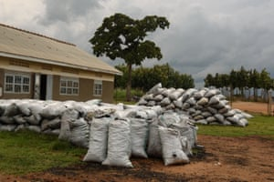 Impounded charcoal in Pabbo, Amuru county