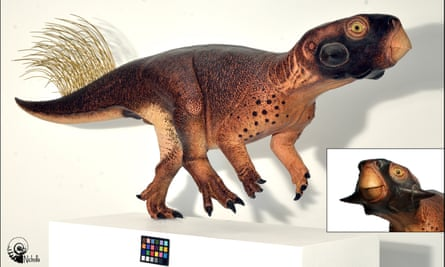 The most accurate reconstruction yet made of a dinosaur: Psittacosaurus by Robert Nicholls.