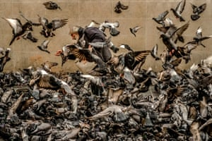 Poison Heart by Alexandre Grand (finalist, single) Grace and elegance emerge from chaos in this shot of an old man feeding pigeons