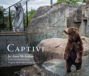 The cover image of Captive by Jo-Anne, McArthur, the book will be launched in New York on 21 October.