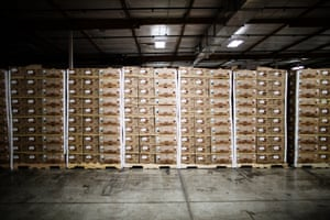 Produce at the Second Harvest Food Bank in San Jose, California.