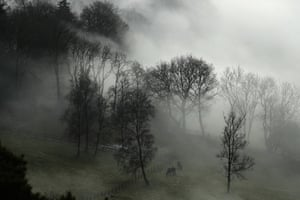 Freezing Fog Blankets Southern England In Pictures Uk