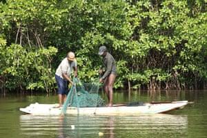 Fishermen cast their nets in Pambala lagoon's mangrove area