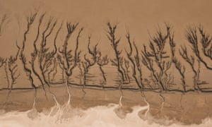A dried up lake in California's Mojave Desert. A theme of Aya Okawa's work is water management and water patterns.