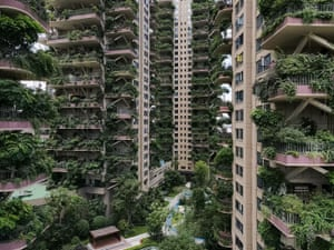 Chengdu, China Plants appear to overrun largely uninhabited apartment buildings, in southwest China's Sichuan province