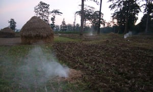 Chilli smoke is used to keep elephants away.