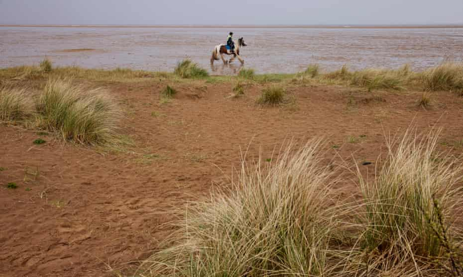 Saltfleetby-Theddlethorpe national nature reserve in Lincolnshire, one of 34 sites being rejuvenated as part of the Dynamic Dunescapes project.