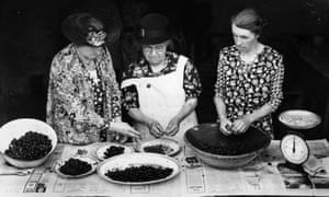 1 August 1943: WI members weigh and stone cherries in order to make jam.