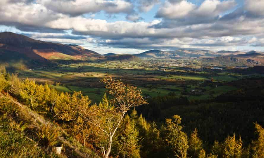 View from Whinlatter Forest Park, Lake District National Park, Cumbria, England.