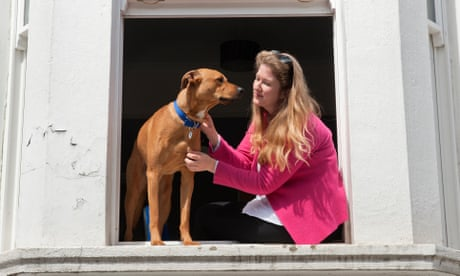 Battersea dog and cat foster carers – photo essay