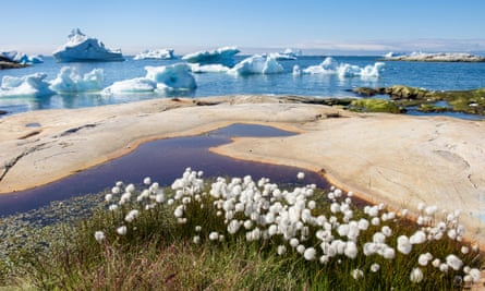 A view of Greenland's shore with icebergs in the background.