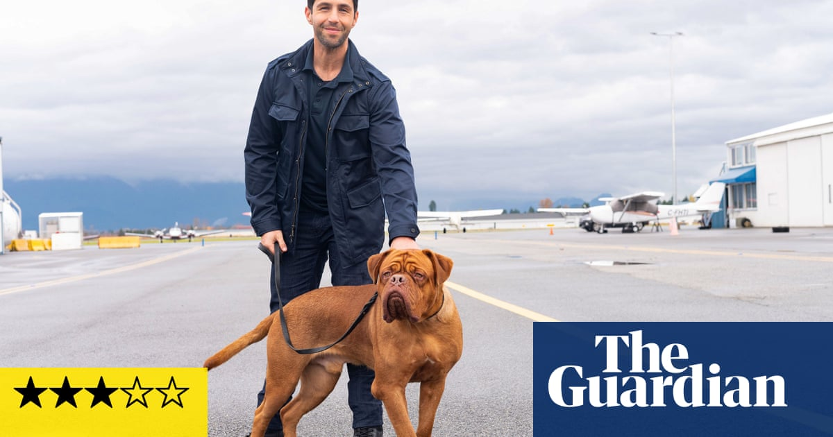 Turner & Hooch review – the droolsome twosome are back with a 21st-century dogmance