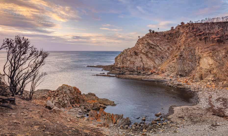 Kangaroo Island's Western River Cove