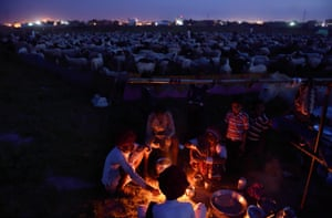 Shepherds prepare dinner at their camp in Sikri in Faridabad district