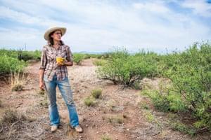 arizona story