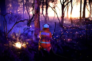 Central Mangrove, Australia: a firefighter conducts back burning measures to secure residential areas from encroaching bushfires at the Mangrove area, north of Sydney