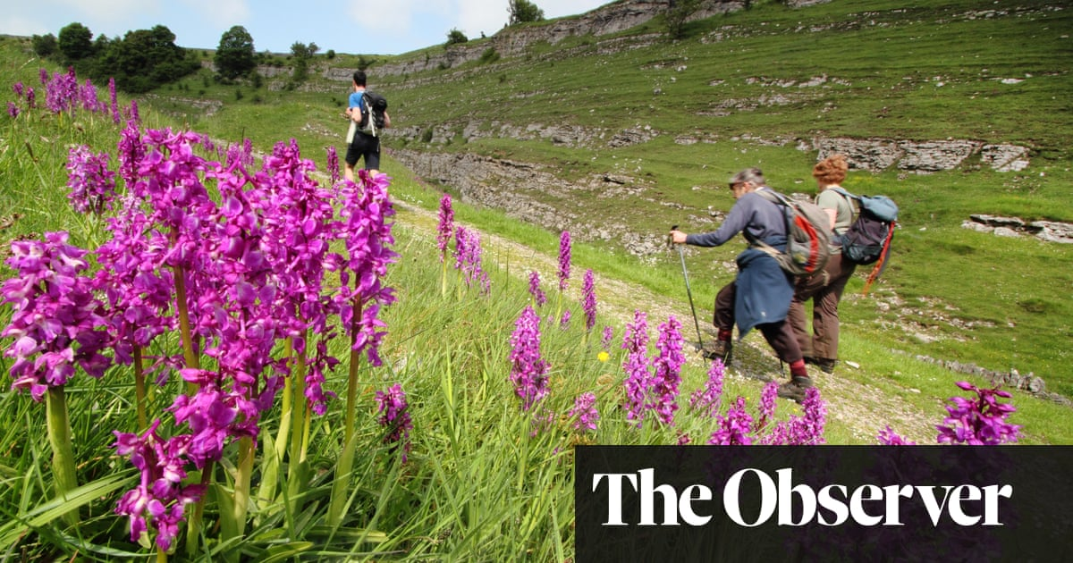 Blooms with a view: 10 of Britain's best spring walks