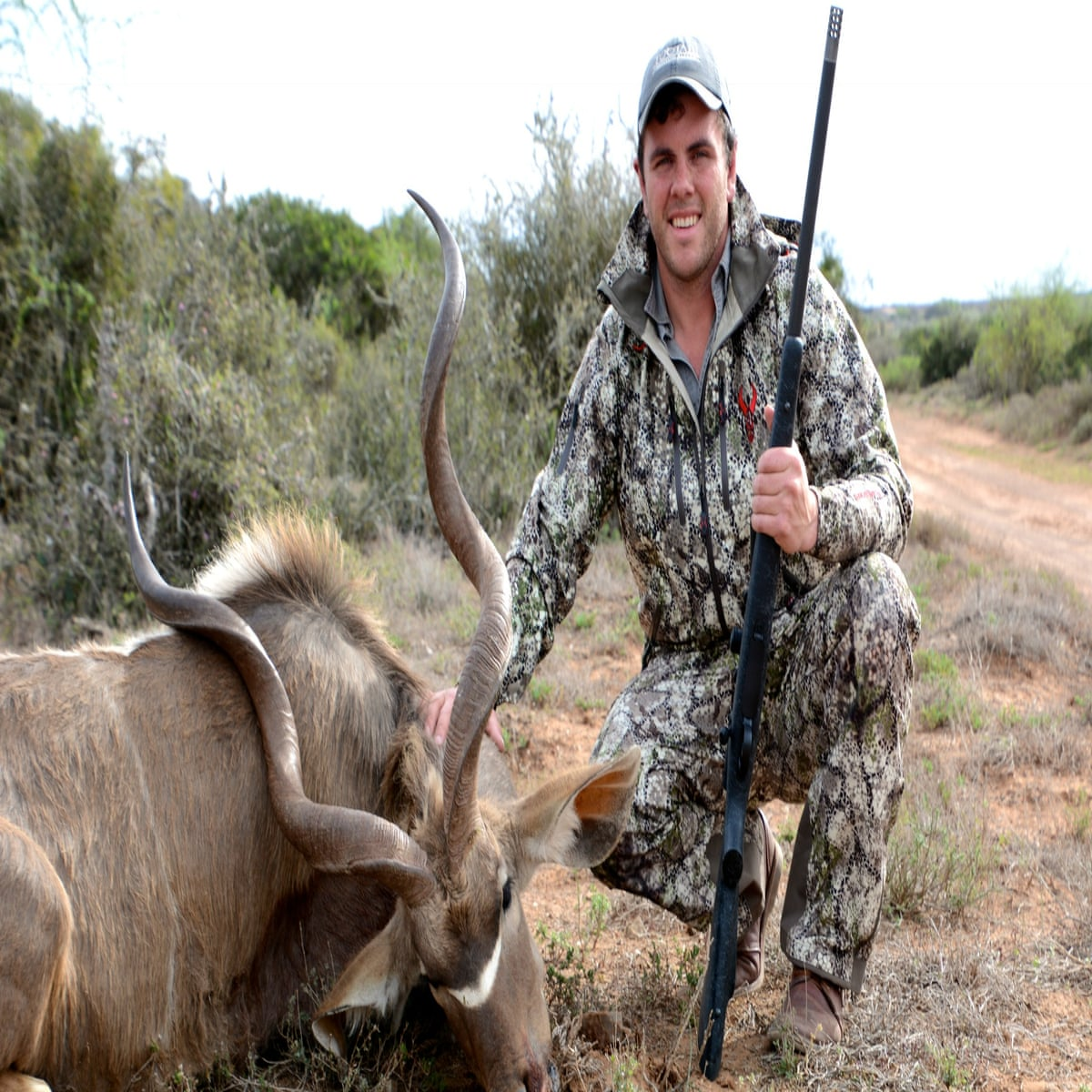 Who Would Want To Kill A Lion Inside The Minds Of Trophy Hunters
