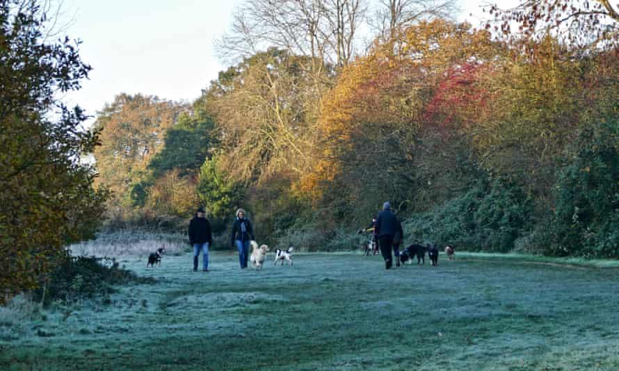 People walking in Reading, England, November 2020
