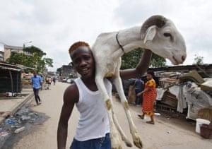 Man carrying sheep