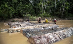 Ashaninka men, identified by locals as illegal loggers, tie tree trunks together to move them along the Putaya River. Authorities in Peru said they have charged five men in the timber industry with homicide in the deaths of indigenous activists.