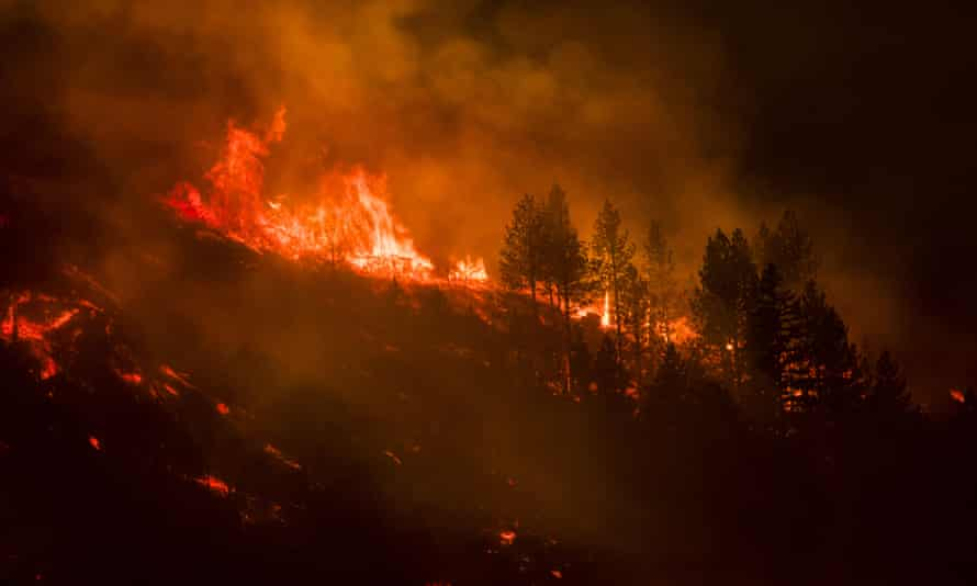 Trees burn through the night in the Dixie fire on 17 August.